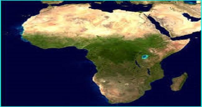 Afrique, danger de consommation du miel importé